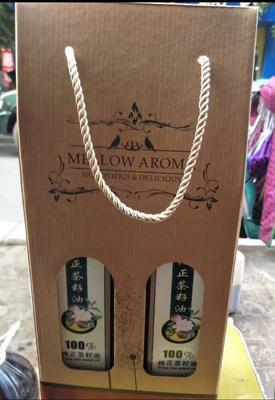 四川泸州野山茶籽