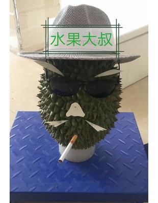 广西百色干荛榴莲 60 - 70%以上 3 - 4龙8国际官网官方网站