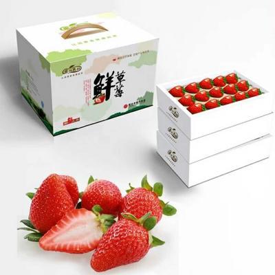江苏宿迁奶油草莓 30克以上
