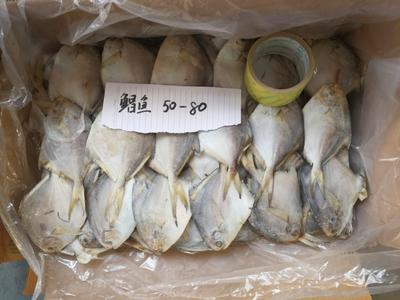 江苏连云港白鲳 野生 0.5公斤以下