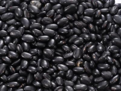 山西大同小黑豆