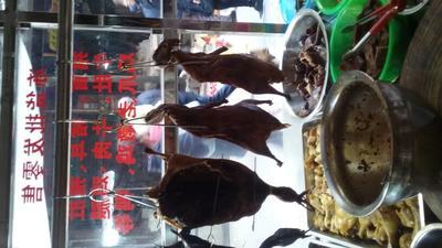 湖南衡阳衡南县烤鸭 2-3个月