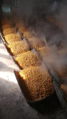 这是一张关于包谷酒 50度以上的产品图片