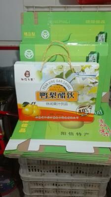 山东滨州果醋饮料 塑料瓶 18-24个月