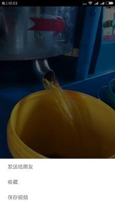 黑龙江哈尔滨笨榨豆油
