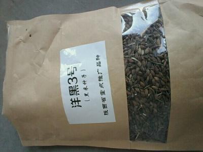 这是一张关于盘锦大米 有机大米 晚稻 一等品的产品图片