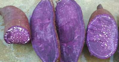 河南开封开封县紫罗兰紫薯 3两以上