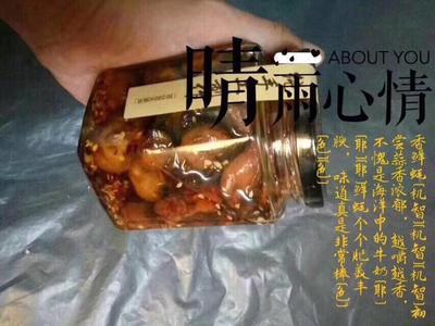 广东潮州饶平县咸鱼