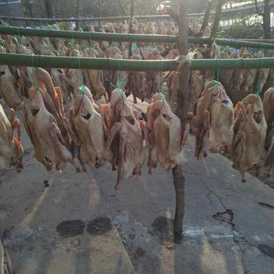 安徽省六安市裕安区皖西白鹅 简加工