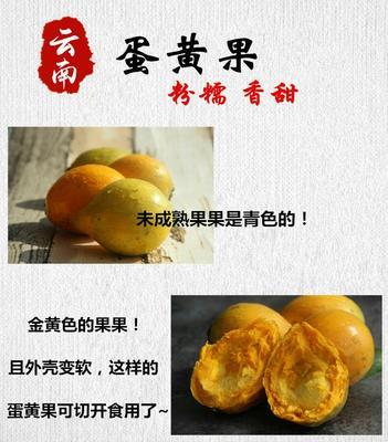 云南保山隆阳区仙桃1号 30-60g