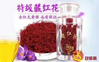 青海西宁城东区红花