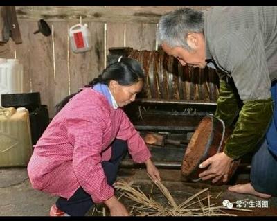 贵州黔西贞丰县茶叶籽油