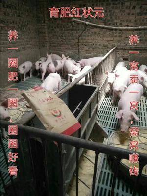 河南郑州金水区微生物饲料添加剂