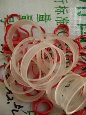 湖北省武汉市洪山区食用菌平菇出菇菇圈