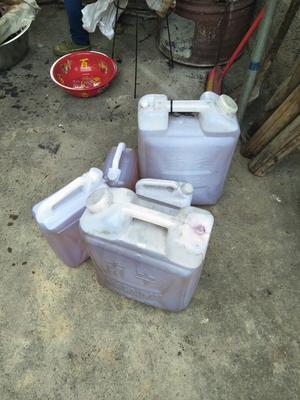 这是一张关于有机山茶油的产品图片