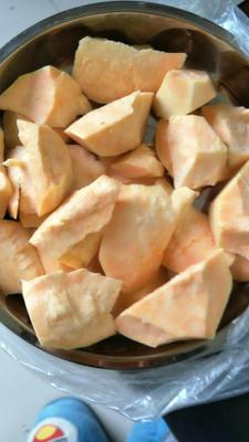 广东中山中山密心薯 0.5-1斤