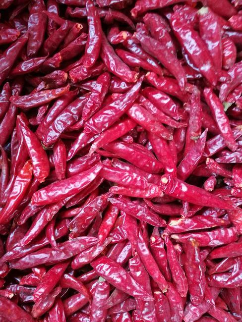 朝天椒 5~10cm 红色 中辣