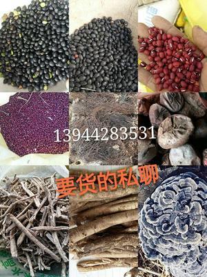 吉林吉林桦甸市赤小豆