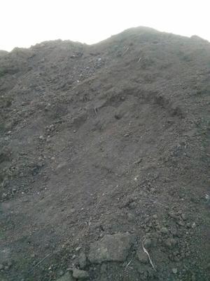 山东济宁邹城市双孢菇菌渣