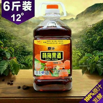 湖南怀化靖州苗族侗族自治县杨梅酒 10-15度