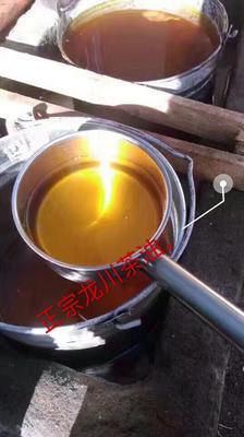 广西百色右江区茶叶籽油