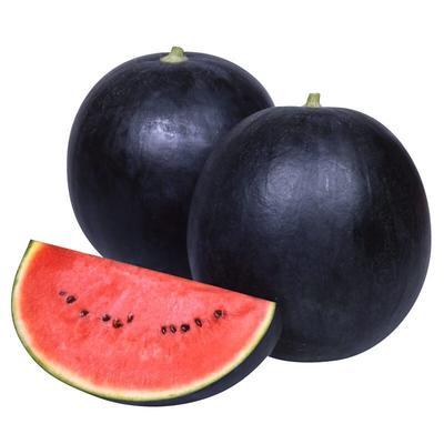 海南海口琼山区日本小西瓜 有籽 1茬 9成熟 2斤打底