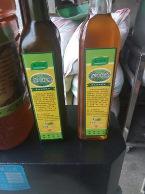 湖南益阳安化县茶叶籽油