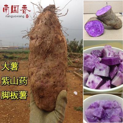 广东湛江徐闻县紫板薯 2斤以上