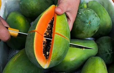海南琼海琼海市红心木瓜 1 - 1.5斤