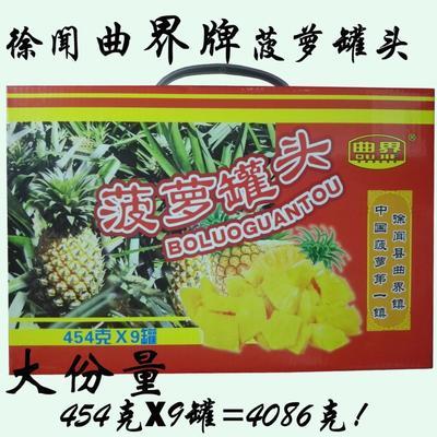 广东省湛江市徐闻县菠萝罐头 24个月以上