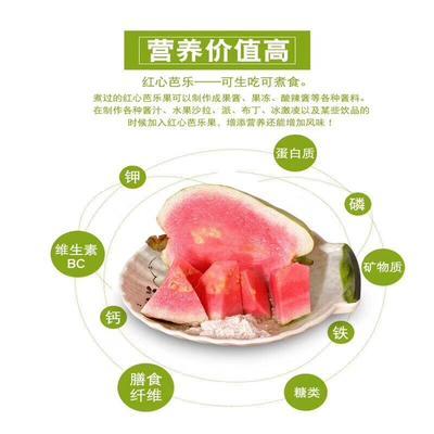 福建漳州平和县红心芭乐 200-250克