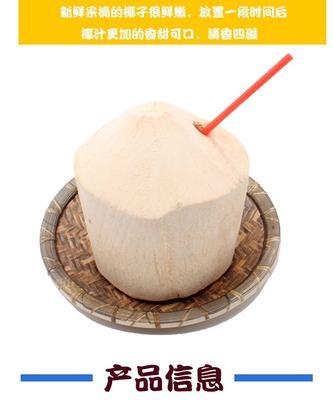 海南三亚海棠区椰青 3 - 4斤
