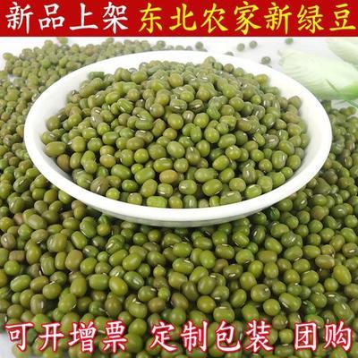广西南宁青秀区东北绿豆 散装 1等品