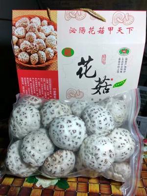 江苏省苏州市昆山市花菇 4.6 - 6.0 cm 一级