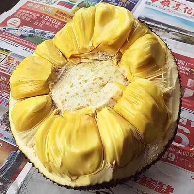 云南西双版纳景洪市泰国菠萝蜜 15斤以上
