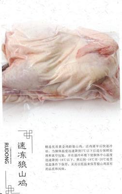 江苏省南通市如东县白条鸡 冷冻