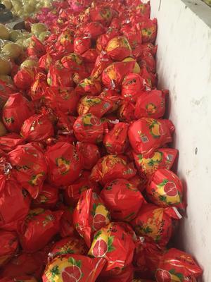 红心柚 2斤以上