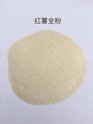 山东济宁泗水县红薯全粉