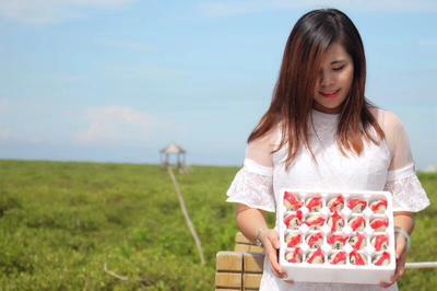 广西壮族自治区北海市合浦县烤海鸭蛋 箱装