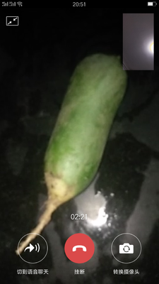 山东省泰安市泰山区水果萝卜 0.2~1斤