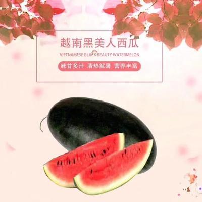 江西赣州信丰县黑美人西瓜 有籽 2茬 10成熟 4斤打底