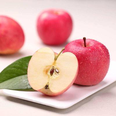 甘肃天水秦州区红富士苹果 膜袋 片红 80mm以上