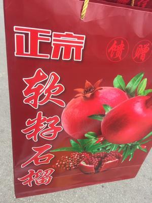云南昆明西山区盐水石榴 0.6 - 0.8斤