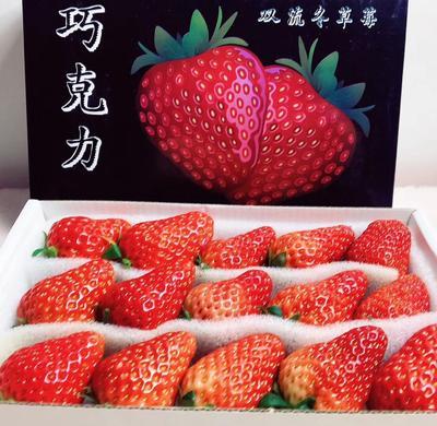 这是一张关于双流冬草莓 20克以上的产品图片