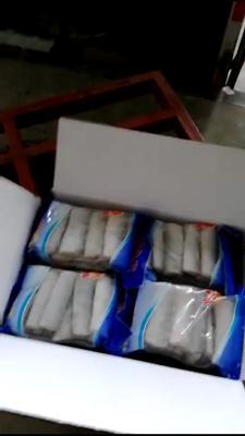 陕西西安雁塔区野生带鱼 野生 0.5公斤以下