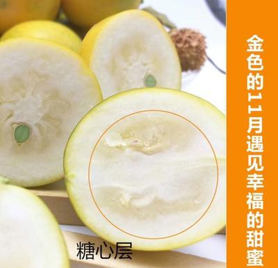 广西柳州融安县滑皮金桔 4-5cm 1两以下