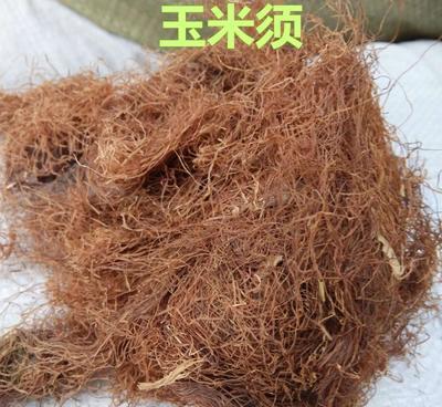 云南文山文山市玉米须