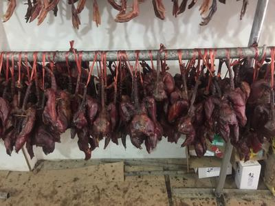 湖北襄樊枣阳市地产山鸡 1-2斤