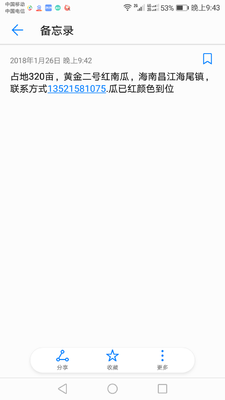 海南昌江昌江黄金二号红南瓜 2~4斤 扁圆形