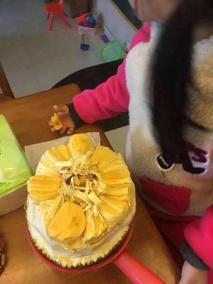 浙江台州黄岩区越南菠萝蜜 10斤以下
